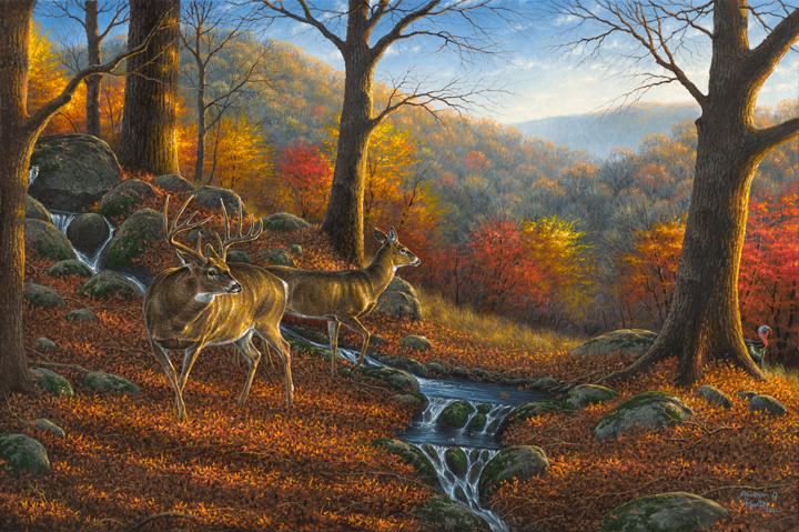 hunterridge